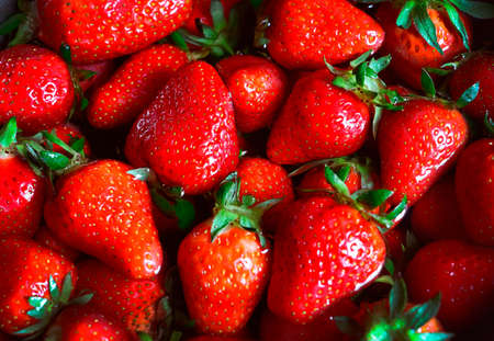 Closeup photography of fresh strawberry lying in the water.Top view,many fresh berries.Good for placing text.Food background.Bright,colorful backdrop.