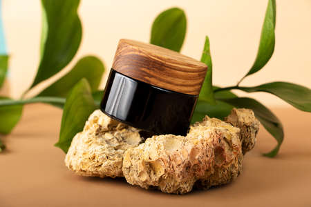 Closeup photography of the skin care packaging with wooden cover.Stay on the natural decorative stones.Fresh green leafs on the background, organic concept.