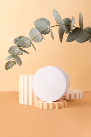 Blank round cosmetics container on the pastel isometric background.Empty geometrical podium and fresh eucalyptus branch behind.Earth colors, zero waste containers.Mockup concept.Vertical photography.