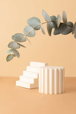 Empty geometrical podiums on the isometric pastel background.Fresh eucalyptus branch from above like arch.Good as mockup for showing cosmetics or products. 版權商用圖片