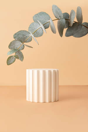 Empty geometrical podium on the isometric pastel background.Fresh eucalyptus branch from above like arch.Good as mockup for showing cosmetics or products. 版權商用圖片
