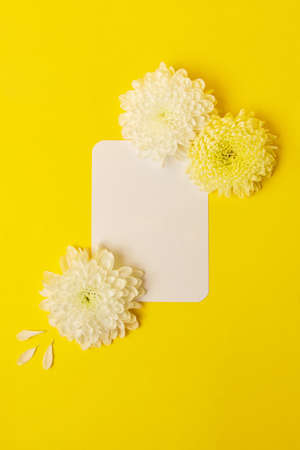 Blank isolated white card on the bold yellow background with beautiful chrysanthemums on the background.Mockup for design.Verical photography with copy space. 版權商用圖片