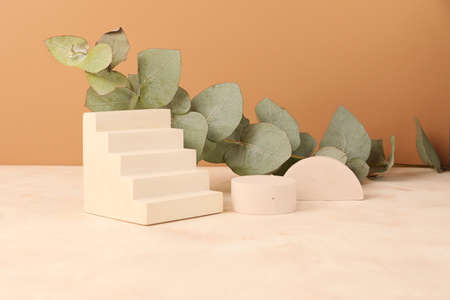 Composition from the empty geometrical podiums and eucalyptus branch behind.Trendy pastel isometric background.Mockup concept, good as showcase.