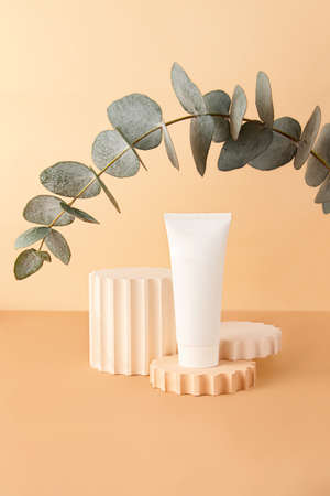 Blank cosmetics tube on the pastel isometric background.Empty geometrical podium and fresh eucalyptus branch behind.Earth colors, zero waste containers.Mockup concept.Vertical photography.
