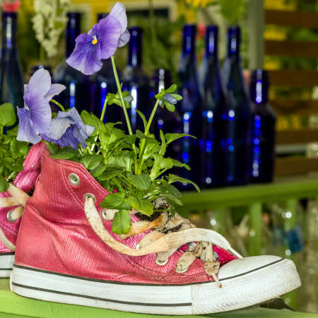 planter: Pink Hi-Top Sneaker Planter Stock Photo