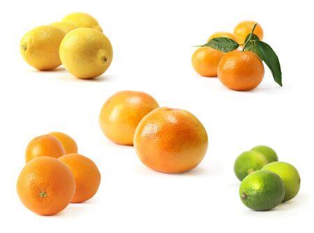 Citrus 免版税图像