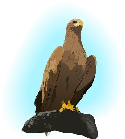 Eagle sur le rocher