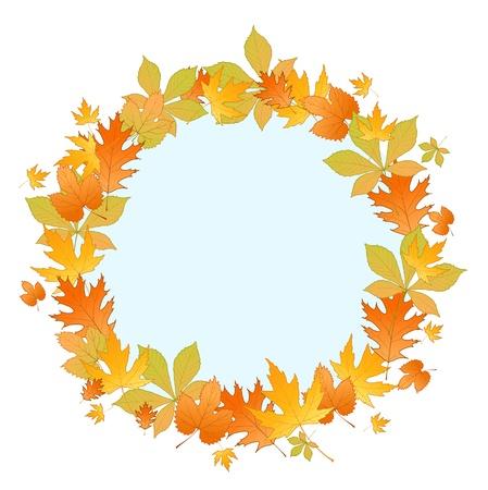 autumn leaf frame: Marco de hoja de oto�o