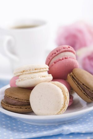 French macaroons Stock Photo - 14891068