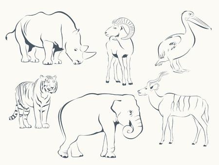 Situ� � la faune sauvage