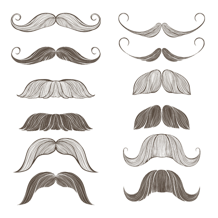 mustache: Hand Drawn Vector Set of Mustache Illustration