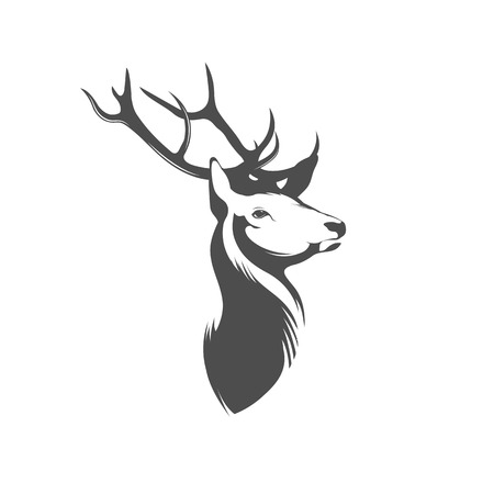 Deer Head on White Background
