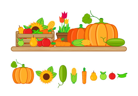 illustration of harvest fruits and vegetables in flat style on white background