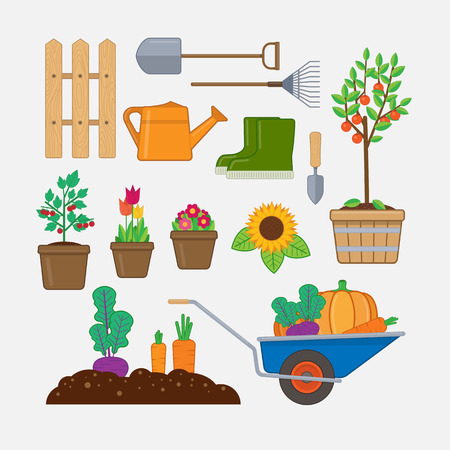 gumboots: Gardening set. Illustration with gardening tools, wooden fence, flowers and plants in pots, gumboots, and wheelbarrow with vegetables.