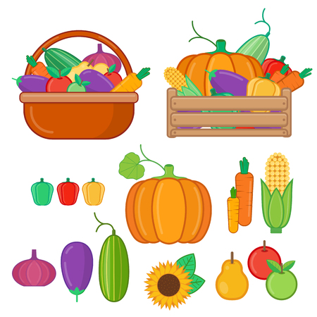 food basket: Fruits and vegetables in basket and  wooden box. Organic food illustration in flat style