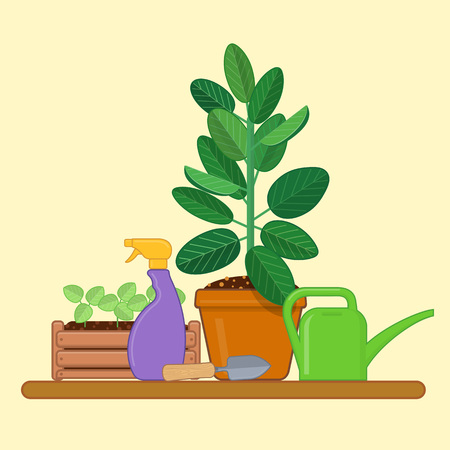 Gardening tools, seedlings and houseplants in a pot. Vector illustration in flat style
