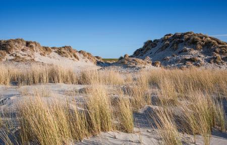 Sand dunes at the German North Sea Stock Photo