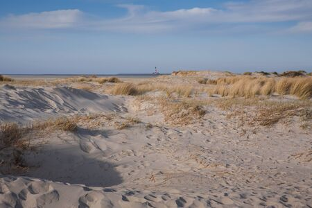 Landscape with sandy beach and a lighthouse in the background on Stock Photo