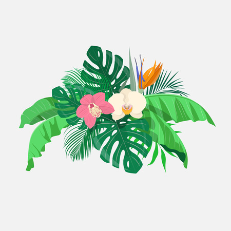 jungle plants: Composition of tropical leaves and exotic flowers on a light gray background. Vector illustration