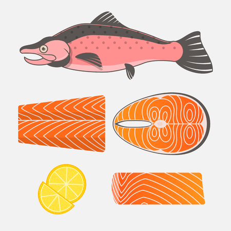 salmon fillet: Salmon fish and salmon meat on white background. Fresh raw salmon steaks and fillet. Vector illustration