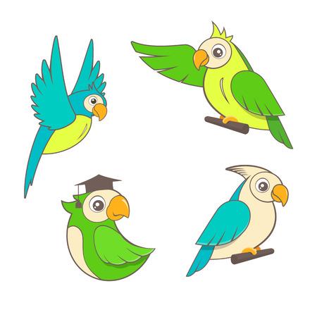 Cute cartoon parrots set on a white background.