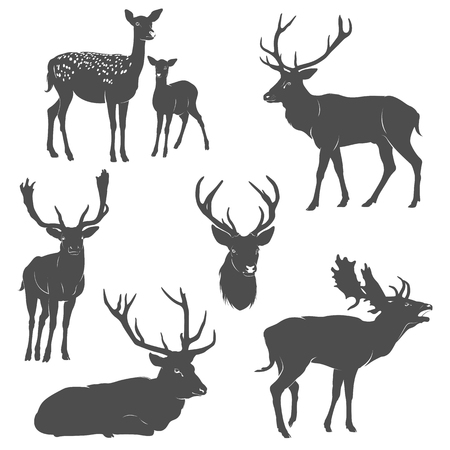Vector set of deer silhouettes in different poses on white background Ilustracja