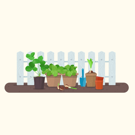 Young plants in plastic and biodegradable peat pots against wood fence. Vector gardening concept Vettoriali