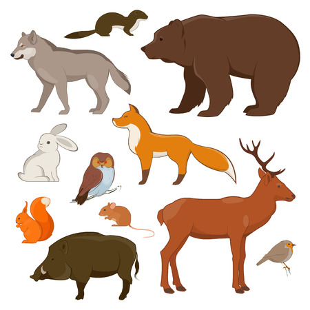 Forest animals set. Wolf, hare, wild boar, squirrel, owl, deer, bear and fox. Vector illustration on white background