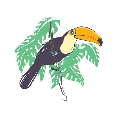 Toucan bird sitting on the branch 일러스트