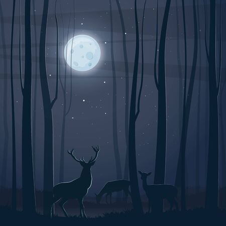 Forest at night. Dark tree and deer silhouettes in the night forest. Vector illustration B Posted by Bienchen-s