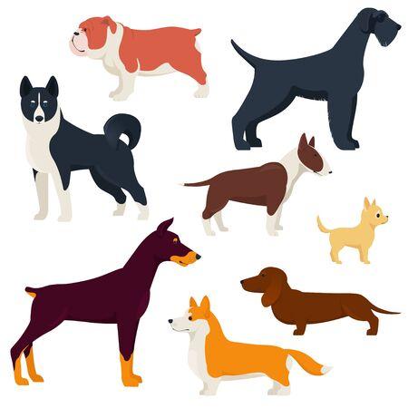 Set of different breeds dogs Illustration