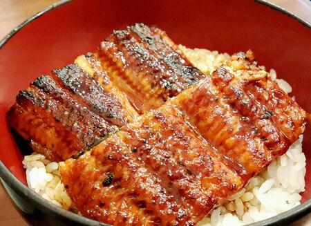 style: Delicious Unagi from Japan