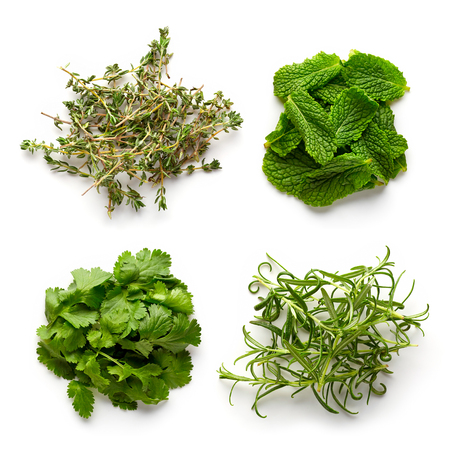 Heap of thyme, rosemary, mint and coriander leaves isolated on white background, top view Stock Photo