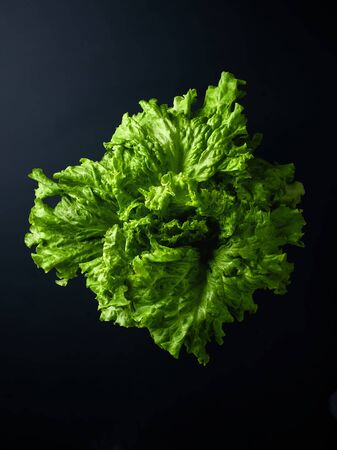 Head of fresh lettuce on black background, top view