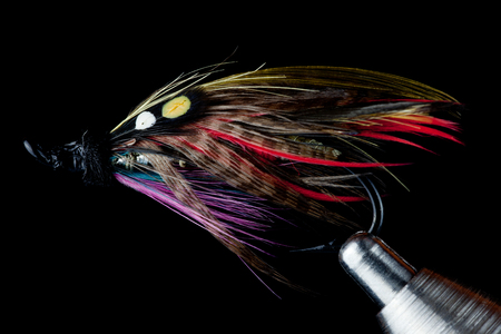fly: A Traditional Salmon Fishing Fly Being Held In a Fly Tying Vise Against a Black Background