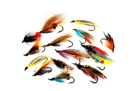 mosca: Una selecci�n de salm�n tradicional Pesca vuela aislada en un fondo blanco