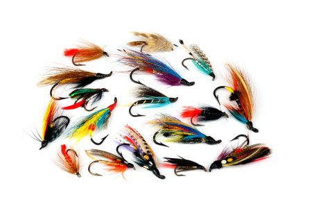fly fish: A selection of traditional trout and salmon fishing flies isolated on a white background