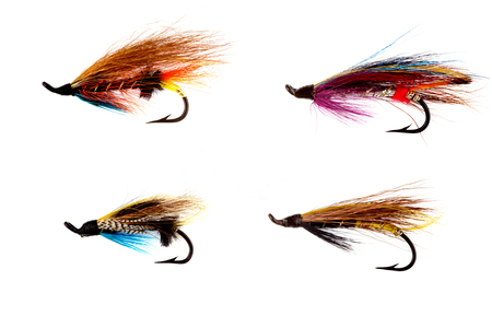 salmon fishing: A selection of traditional salmon fishing flies isolated on white background