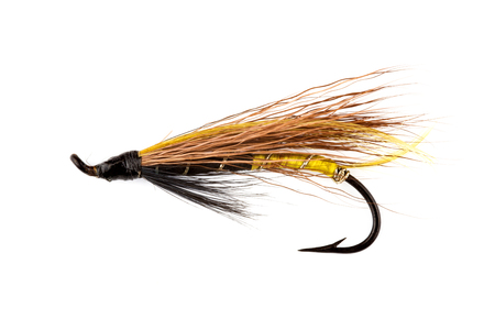 white salmon river: A traditional salmon fishing fly isolated against a white background