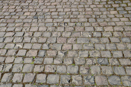 Old cobbled pathway in a country estate park 版權商用圖片