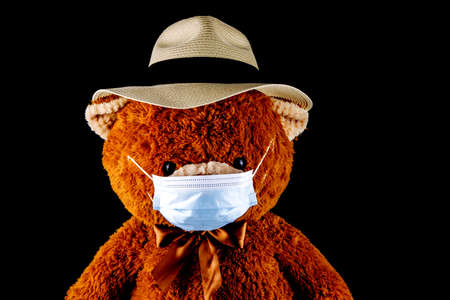 Teddy bear wearing a Panama hat and face mask isolated on a black background