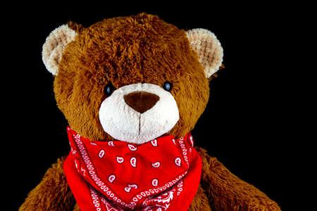 Brown teddy bear wearing bandana around neck isolated on black