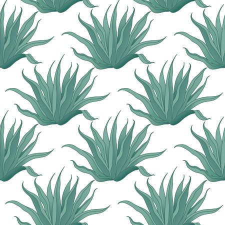 agave: Seamless vector agave cactus pattern