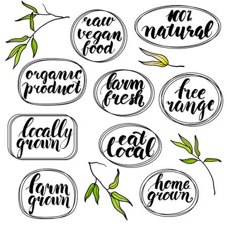 free range: Modern brush calligraphy. Handwritten words - raw vegan food, 100 percent natural, organic product, farm fresh, free range, locally grown, eat local, farm grown, home grown. Hand drawn bamboo leaves Illustration