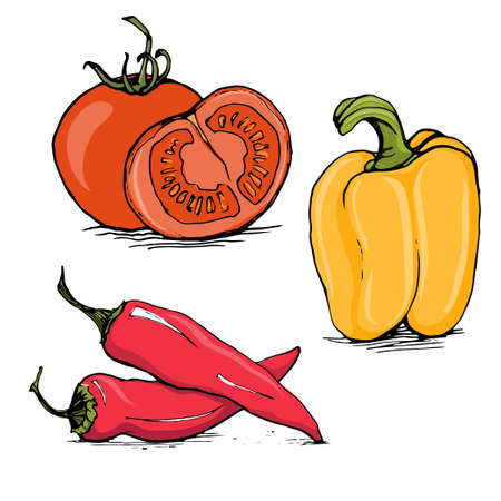 bell pepper: Whole and half tomato, yellow bell pepper and red hot chilli sketch style vector illustration isolated on white background Illustration
