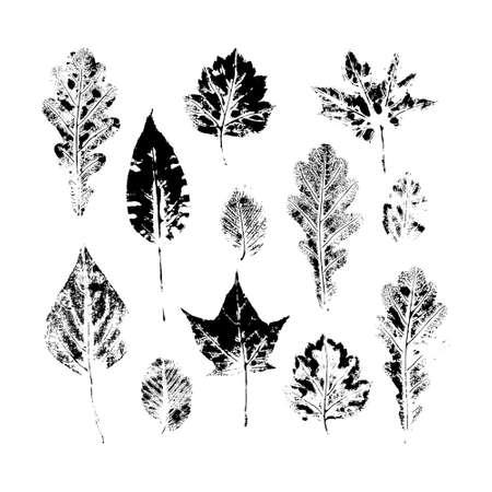 Grand ensemble d'automne, feuilles d'automne - chêne, érable, bouleau - impression à l'encre faite à la main, jeu de timbres, illustration vectorielle en noir et blanc. Ensemble imprimé à la main de feuilles en noir et blanc, automne, symboles d'automne Vecteurs