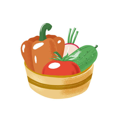 Tomato, bell pepper, radish and cucumber sitting in bowl, salad ingredients, textured vector illustration isolated on white background. Bowl with salad vegetables - tomato, pepper, radish and cucumber