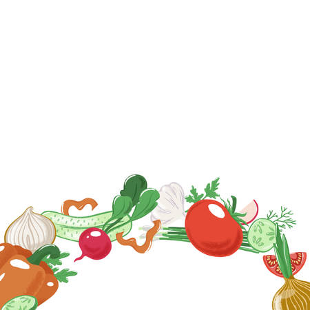 Arc, round strip of vegetables - tomato, bell pepper, radish, onion, cucumber, garlic and ruccola, salad ingredients, textured vector illustration isolated on white background, banner template Standard-Bild - 116790948
