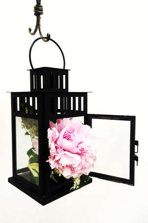 Composition with beautiful pink blooming peony flower in a black metal lantern hanging on the wall. Black metal lantern with blooming pink peony inside, flower like fire concept