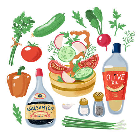 Salad recipe, tomato bell pepper radish cucumber falling in bowl surrounded by vegetables herbs olive oil balsamic vinegar salt and pepper, textured vector illustration isolated on white background